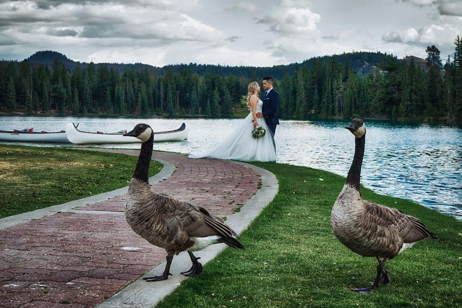 Wedding photographer Marcin Karpowicz (bdfkphotography). Photo of 27.11.2017