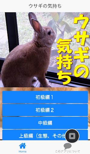 ウサギの気持ち