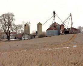 Photo: Silos with corn crips farm field
