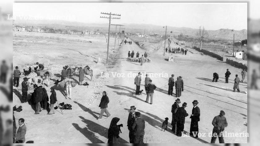 Mercado de ganados que se celebraba en la localidad de Huércal Overa en los años de la posguerra.