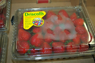 Photo: Just $2.58 for strawberries. If I don't get to go picking this weekend I will run back over and get some for our Memorial Day picnic.