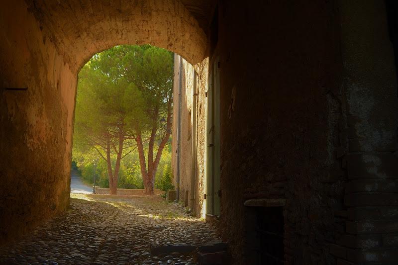 Un corridoio e...natura di samantamura