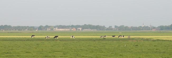 Photo: Zicht op Westmaas vanaf de Ritselaarsdijk