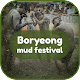 Boryeong Mud Festival Download on Windows