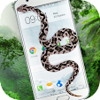 Snake On Sc.. file APK for Gaming PC/PS3/PS4 Smart TV