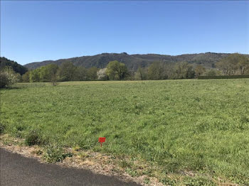 terrain à Monceaux-sur-Dordogne (19)