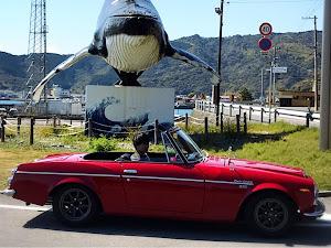フェアレディー SR311  1969のカスタム事例画像 yurakiraさんの2019年03月25日00:18の投稿