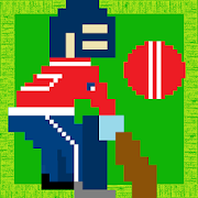 Beat Ball - Cricket game