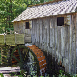 Cades Cove Mill  by Deborah Lucia - Buildings & Architecture Public & Historical ( wheel, old, water, building, mill )