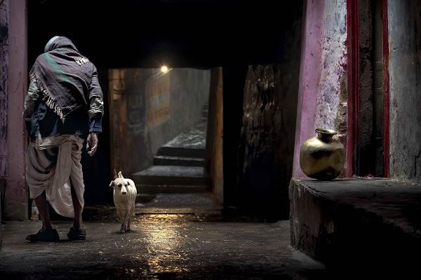 Spirits in the night di Roberto Pazzi Photography