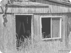 Photo: (Year 2) Day 343 - Old Barn