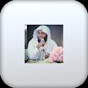Sheikh Mansour Al Salmi icon