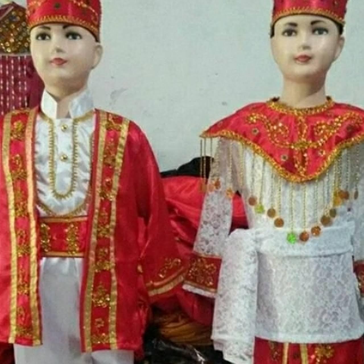 Kostum Medan Jual Sewa Baju Adat Jas Profesi Anak