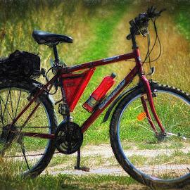 ... by Tomasz Marciniak - Transportation Bicycles ( bicycle )