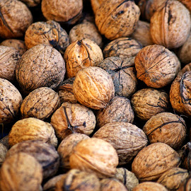 Nuts nuts nuts by Ciprian Apetrei - Food & Drink Fruits & Vegetables ( fruits, nuts, autumn, brittany, food )