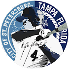 Tampa Bay Baseball icon