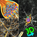 3D Biology + icon
