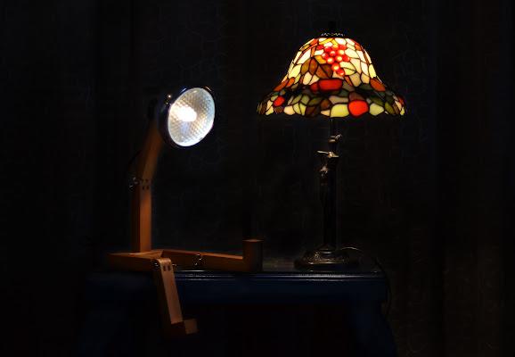 Confessioni di una giovane lampada di Migliu