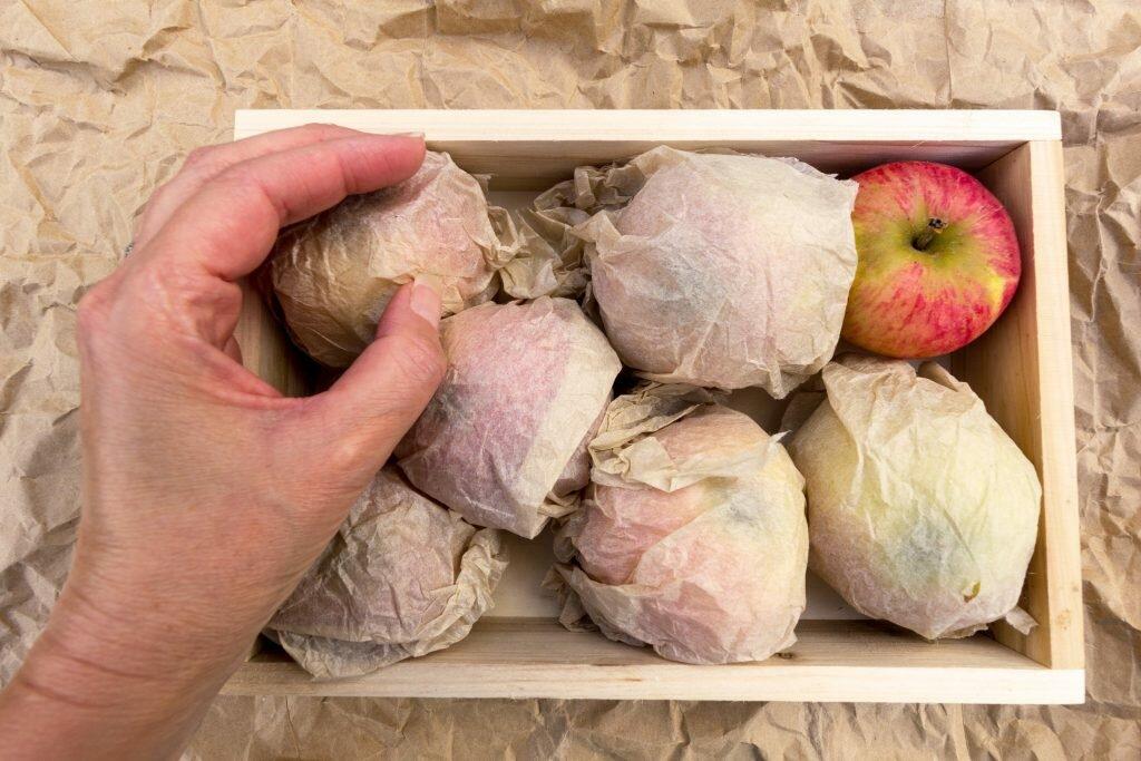 Ящик яблок завернутых в пропитанные вазелином салфетки
