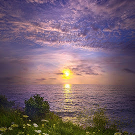 For Those Who Love, Time Is An Eternity by Phil Koch - Landscapes Sunsets & Sunrises ( field, sky, twilight, art, meadow, horizon, horizons, landscape, light, sun,  )
