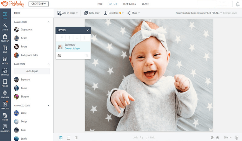 Swap Photo with an Online Editor