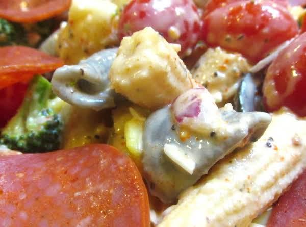 Goldmon Family Favorite Pasta Salad Recipe