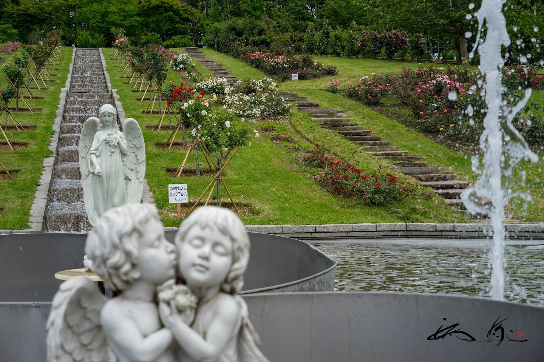 カロスの泉