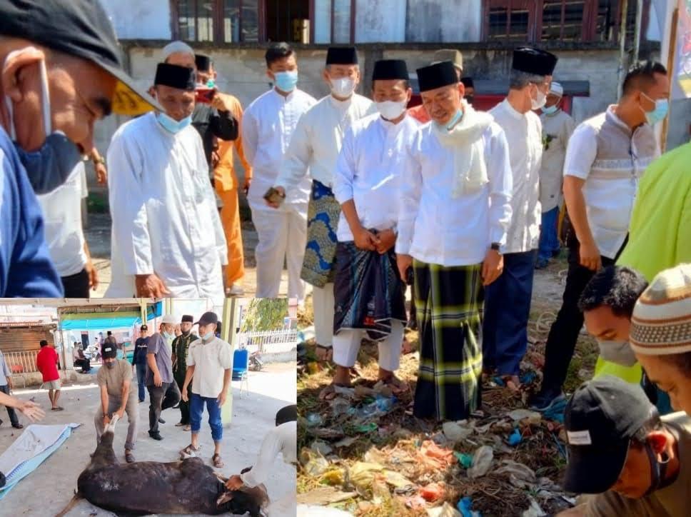 Bupati dan Wabup Rohil Menyaksikan Penyembelihan Hewan Qurban Untuk Awak Media
