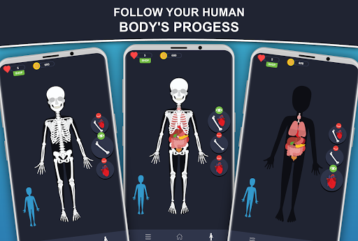 Anato Trivia -  Quiz on Human Anatomy screenshots 2