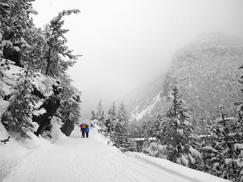 4 passi mentre nevica di utente cancellato