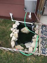 Photo: Bu küçük süs havuzunu bozup daha güzelini yapacağım. Ama hava çok iyi değil Sazlıbosna'da