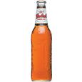 Grolsch Amber Ale