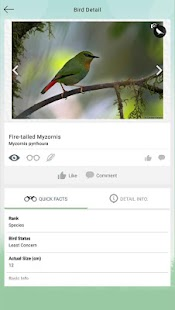 Vannya - Your Digital Bird Guide - náhled
