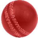 Cricket Scorer for Android icon
