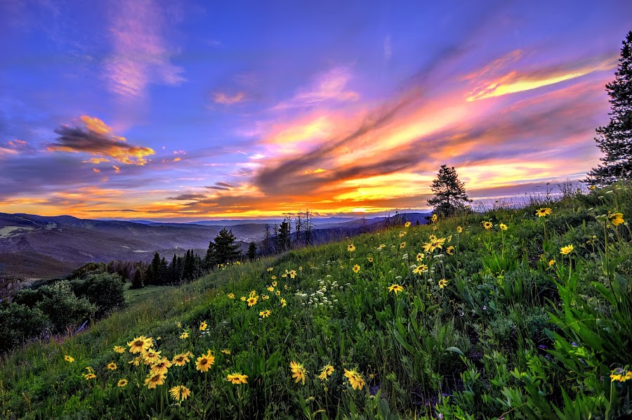 Vail by DE Grabenstein - Landscapes Sunsets & Sunrises