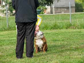 Photo: Bulldogil on hambad :)