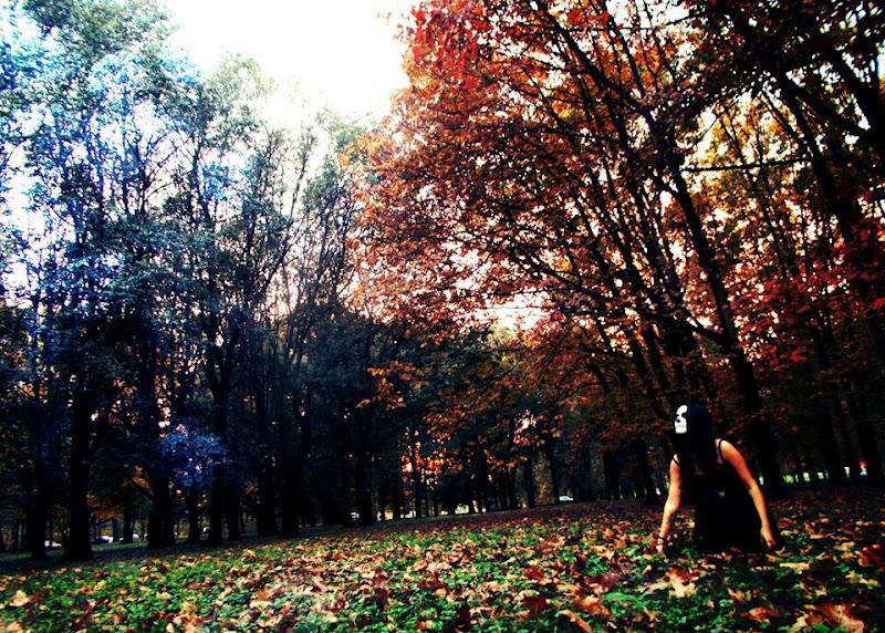 Come l'autunno ingiallisce il tempo... di IlFollettoChiara