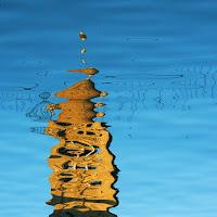 Riflesso in laguna di
