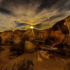 Sunset in the Desert by Jerry Cahill - Landscapes Deserts ( #follow #desert #fakenews #canyonlands #canonphotography #nature #coloradoriver #offroading #exploreutah #redcon #landscapephotography #naturephotography #hike #trail #canon #canyon #redrocks #wanderlust #instagood #nikon #nationalparks #photooftheday #getoutside #love #mountains #greatawakening )