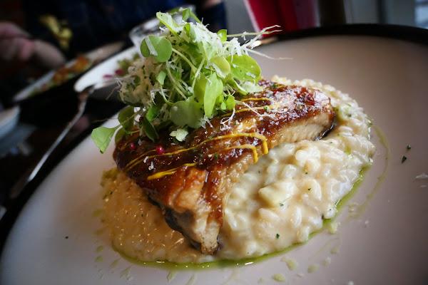 友善農業餐廳 約會聚餐重擊心臟推薦 |波波加洛西式餐館 Pappagallo