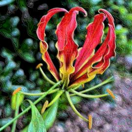 Chrome Glorious by Teresa Wooles - Digital Art Things ( chrome, intense color, flower )
