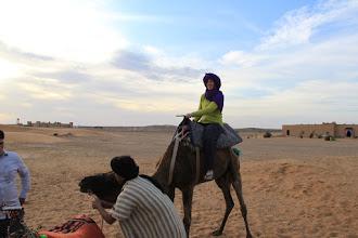 Photo: Sunset camel safari