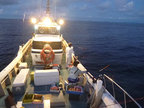 Photo: 夜釣りスタート!