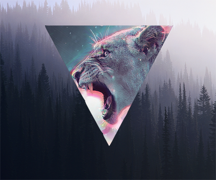 Lion hipster - photo#53