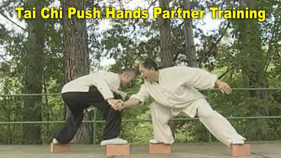 Tai Chi Pushing Hands- screenshot thumbnail