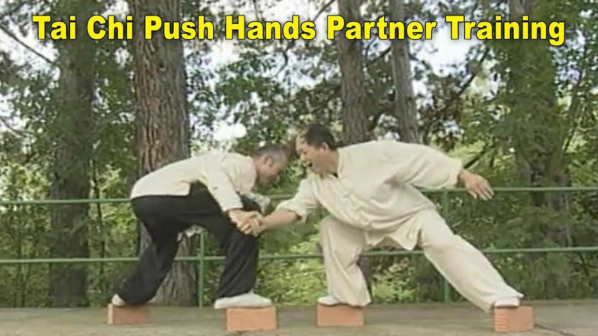 android Tai Chi Pushing Hands Screenshot 9