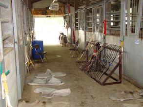 Photo: Stall
