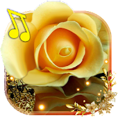 Roses Gallery Live Wallpaper Android APK Download Free By SweetMood