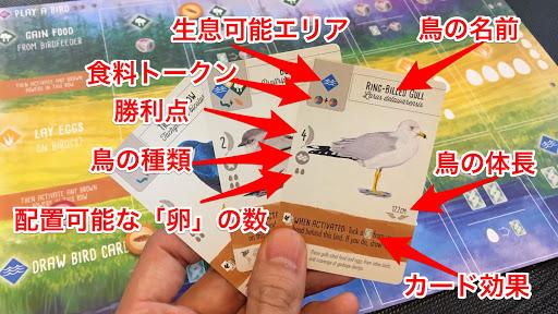 鳥カード|ウイングスパン (Wingspan)