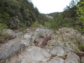 Photo: le lit particulier de la Muga avant la confluence avec le Riumajor